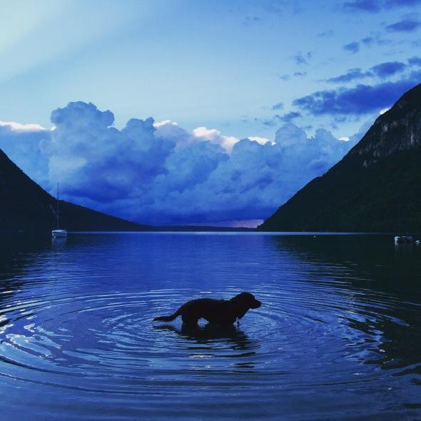 Baci the Lake Monster
